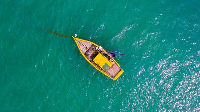 ブラジル勤務の求人を探して海に出た男性